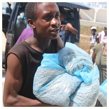 Bitte spenden Sie jetzt für Haitis Familien!